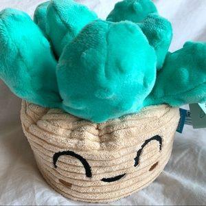 Bark Box Succulent Large Dog Toy Teal Cactus NWT